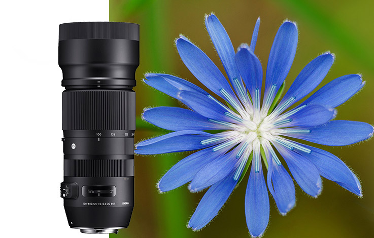 cd46b3c4c Sigma - šedý dovoz vs. oficiálna distribúcia - Novinky - FOTO-VIDEO-SHOP