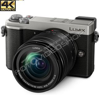 Panasonic Lumix DC-GX9 +14-140mm silver